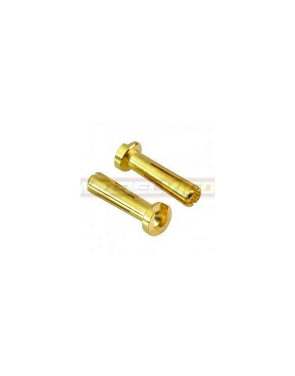CONECTOR 4MM LOW HEIGTH MUCHMORE