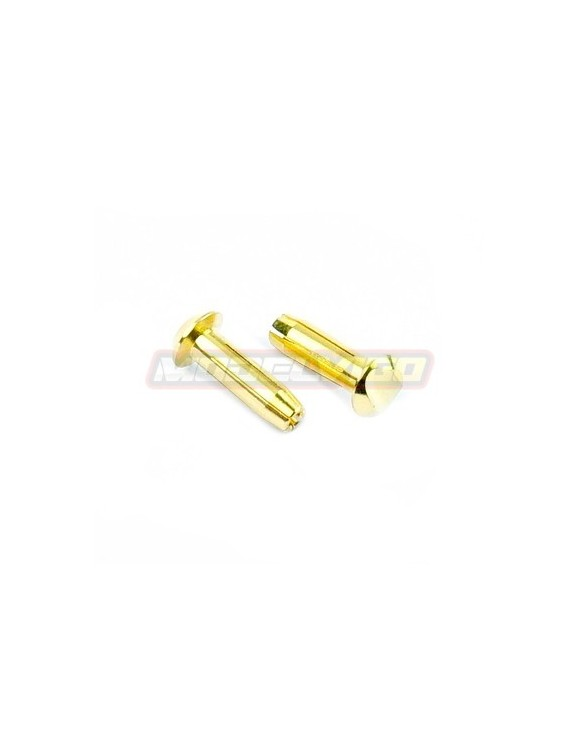 CONECTOR MUCHMORE LCG 4MM